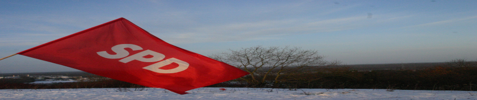 SPD Fahne